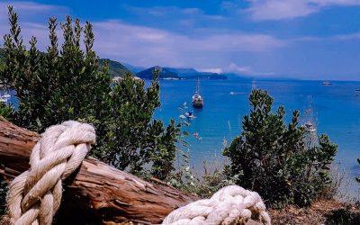 Šunj beach, the heart of Lopud summer buzz